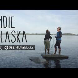 We Are Marine Acousticians in Glacier Bay | INDIE ALASKA